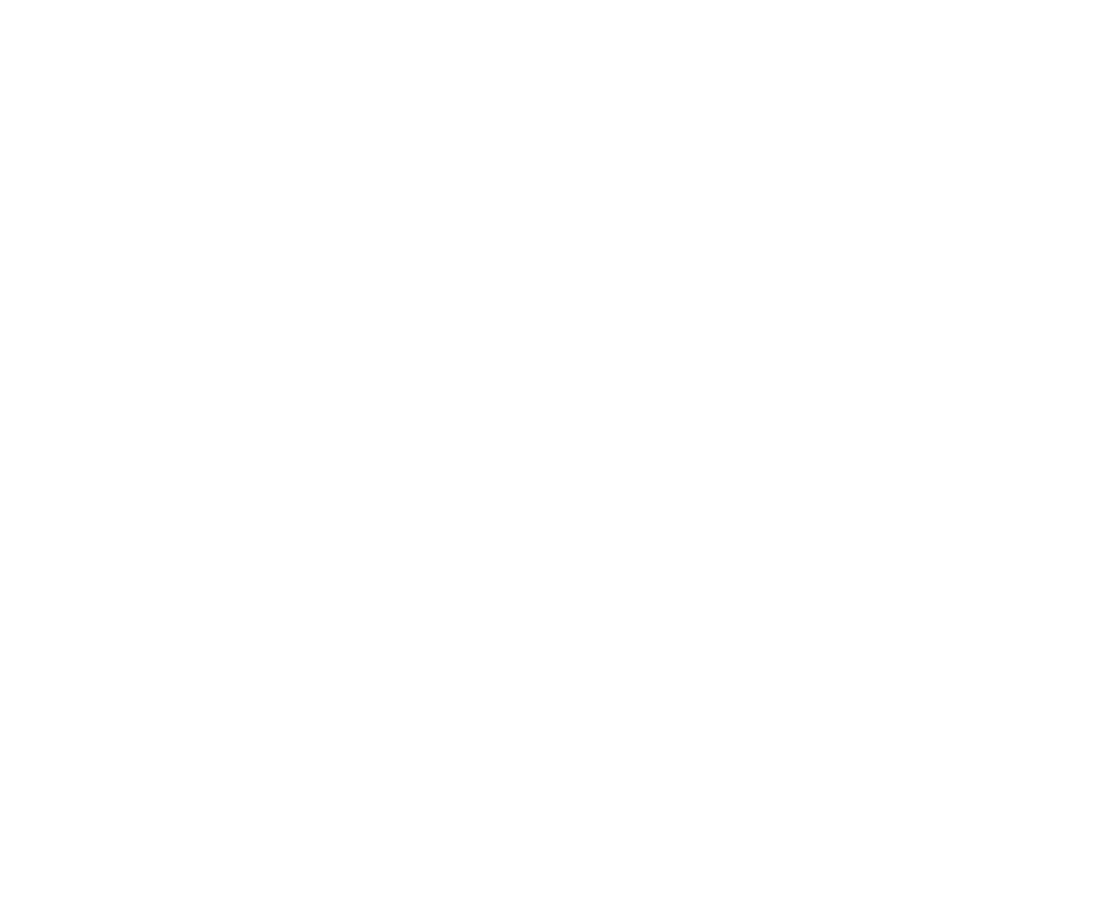 THE WATERPROOFING CO